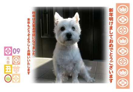H21年桃写真年年賀状のコピー.jpg